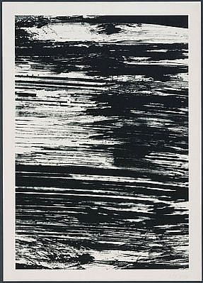 ELLSWORTH KELLY, THE AMAZON: THE STATES OF THE RIVER 18/25 lithograph