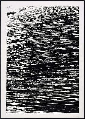 ELLSWORTH KELLY, THE NILE: THE STATES OF THE RIVER 18/25 lithograph