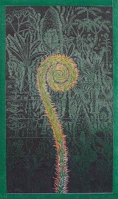 JOHN BUCK, BOTANICA woodblock rubbing