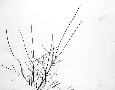 EDIE WINOGRADE, FIGURE/GROUND FROZEN: UNTITLED #13 silver gelatin photograph