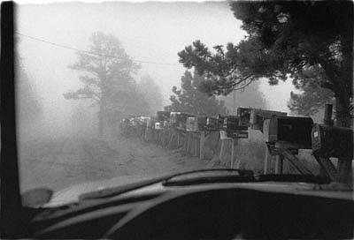 CHUCK FORSMAN, Rural density, near Nederland, Colorado black & white photograph