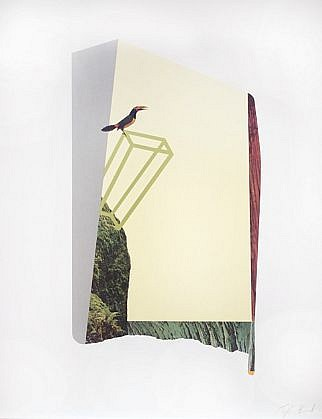 TYLER BEARD, A TOUCAN PERCHED ON GREEN collage