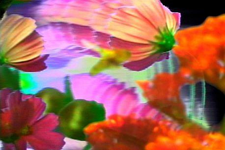GARY EMRICH, CONTACT Ed. 5 video