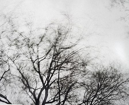 EDIE WINOGRADE, CLEAR AIR (black #1) photograph