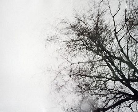 EDIE WINOGRADE, CLEAR AIR (black #2) photograph