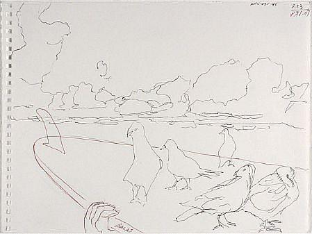 JACK BALAS, HNL O7 #41 PIGEONS SURFBOARD ink on paper