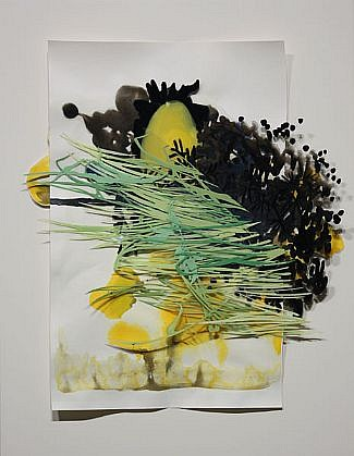 KATY STONE, SAVANNAH Acrylic on Duralar, mounted on lacquered panel in plexi box