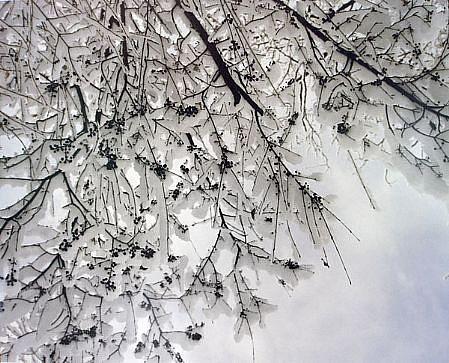 EDIE WINOGRADE, CLEAR AIR (snow #1) photograph