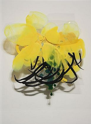 KATY STONE, UNTITLED (BLACK TENDRILS) Acrylic on Duralar, mounted on lacquered panel in plexi box