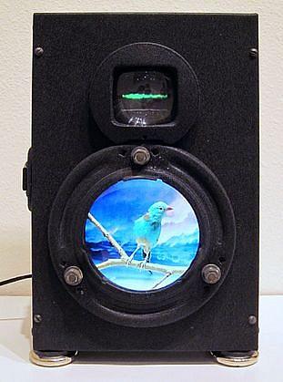DAVID ZIMMER, BLUE BIRD BOX video, power supply.
