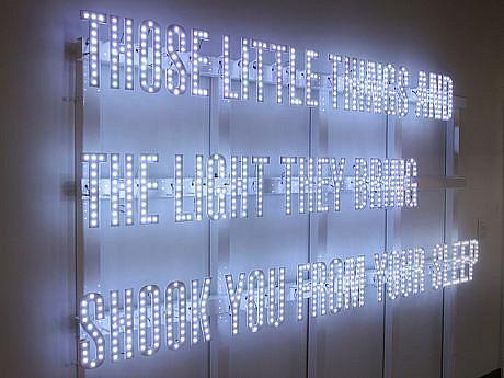 BRANDON BULTMAN, THE LIGHT THEY BRING powder coated steel, LEDs
