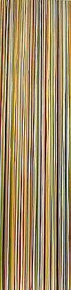 WENDI HARFORD, RAIL latex acrylic on canvas