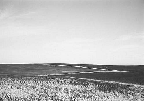 KEVIN O'CONNELL, ROAD AND CROP LINES ED. 2/25 platinum print