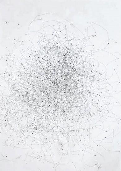 WILLIAM LAMSON, MOLINA DRAWING 41 Liters. Jan 28, 2009. 11:30-2:30 PM, Colonia Valdense, Uruguay graphite drawing