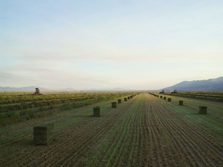 LUCAS FOGLIA, FRONTCOUNTRY BALING HAY, DIAMOND VALLEY, NEVADA Ed.8 digital C-print on Fuji Crystal Archive paper