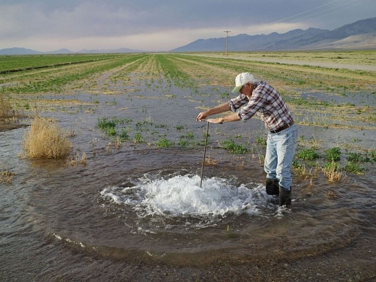 LUCAS FOGLIA, FRONTCOUNTRY DON FLOOD IRRIGATING ALFALFA, DIAMOND VALLEY, NEVADA Ed.8 digital C-print on Fuji Crystal Archive paper