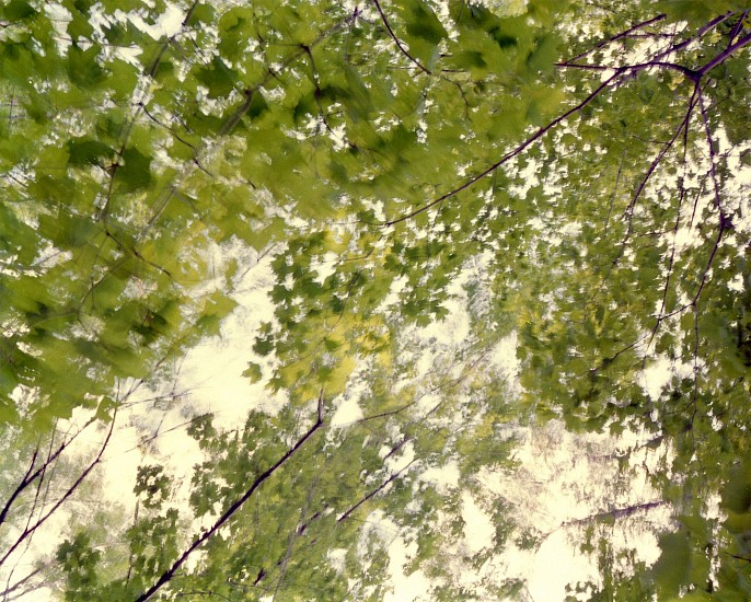 EDIE WINOGRADE, CLEAR AIR (green 9) photograph