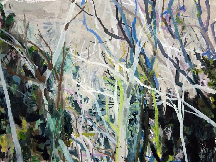 ALLISON GILDERSLEEVE, SKY STUDY oil on canvas