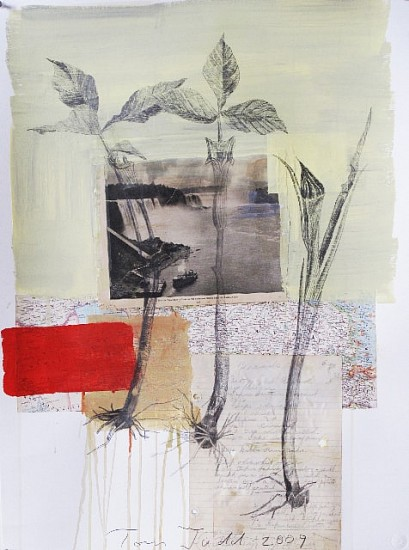 TOM JUDD, NIAGRA mixed media and paper