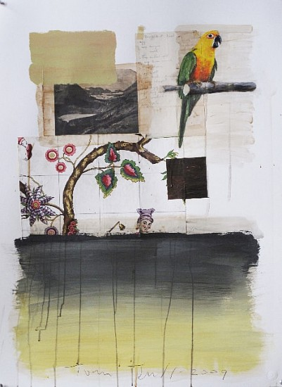 TOM JUDD, PARROT mixed media and paper