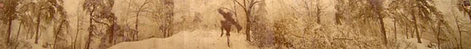 KAHN + SELESNICK, BALOG DANCING AP 3 PANORAMIC SURVEY PHOTOGRAPH sepia