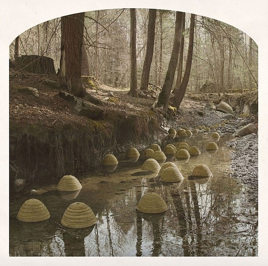 KAHN + SELESNICK, MARCH OF THE BEEHIVES  3/5 pigment print