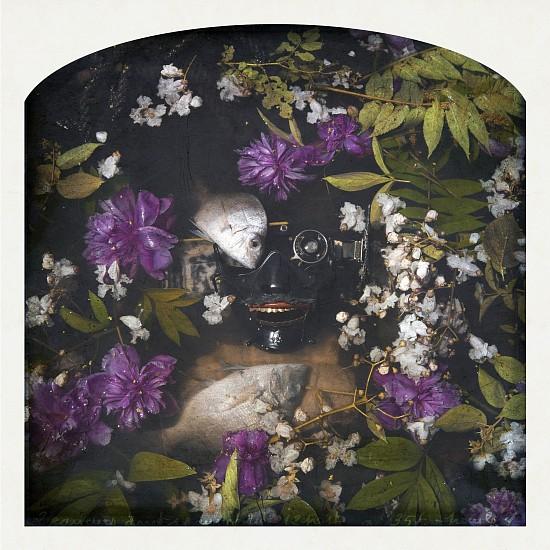 KAHN + SELESNICK, SAMURAI MASK, PEONY, PORGY pigment print