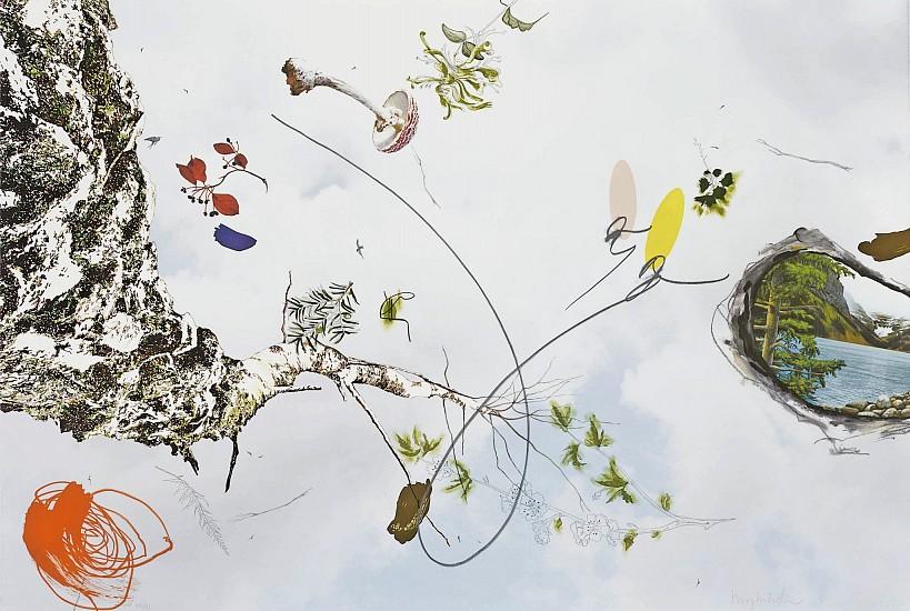 BENNY DRÖSCHER, ANOTHER SKY UNLEARNED (BIRCH) lithograph