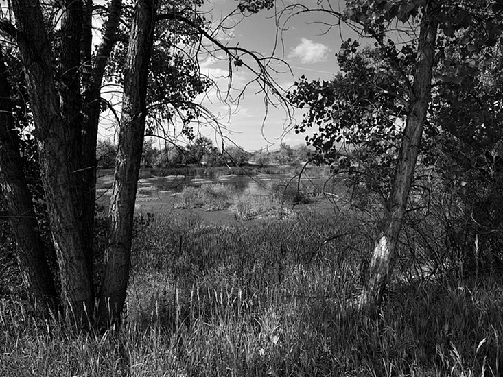 RICHARD VAN PELT, SAWHILL PONDS, BOULDER COUNTY, COLORADO 1894 pigment print