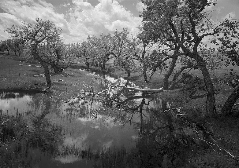 RICHARD VAN PELT, WALKER CREEK, WYOMING pigment print