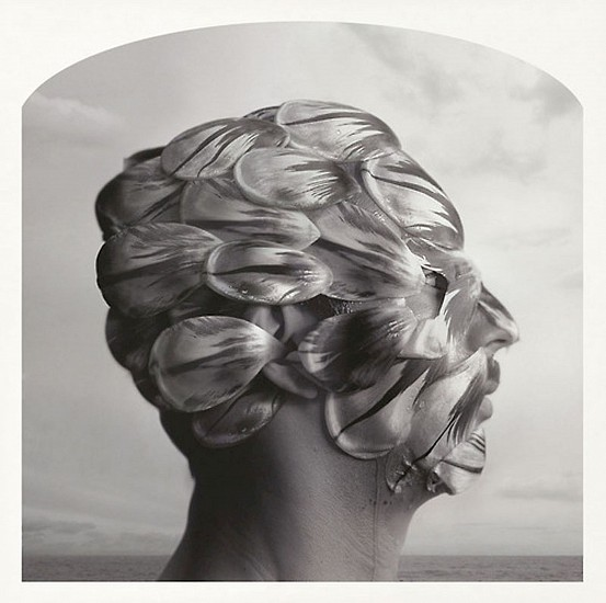 KAHN + SELESNICK, TULIP MANIA  Ed. 5 pigment print