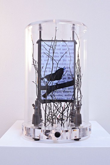 DAVID ZIMMER, THE LIME TREE 2 (B) LCD video and mixed media
