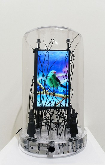 DAVID ZIMMER, LONESOME BIRD 1 LCD video and mixed media