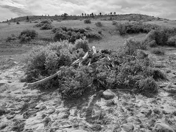 "RECENT ARRIVALS, RICHARD VAN PELT, ""(FLOOD) COAL CREEK, BOULDER COUNTY, CO 2214"" pigment print on Hahnemuhle paper"