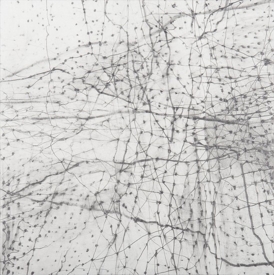 "RECENT ARRIVALS, ERIN WIERSMA, ""GROUNDS, 7/10/2015"" Graphite on Paper"