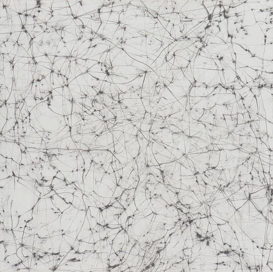 """RECENT ARRIVALS, ERIN WIERSMA, """"LIMESTONE, 5/19/2014"""" Graphite on Paper"""