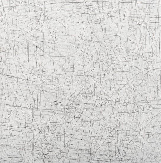 "RECENT ARRIVALS, ERIN WIERSMA, ""GROUNDS, 11/26/2015"" Graphite on Paper"