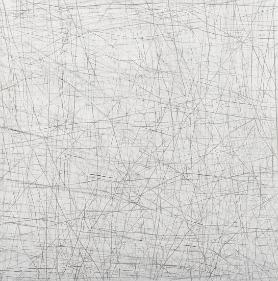 "RECENT ARRIVALS, ERIN WIERSMA, ""GROUNDS, 11/26/2015"" Graphite on Paper"