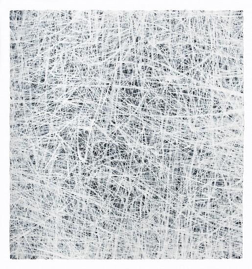 "RECENT ARRIVALS, ERIN WIERSMA, ""EXAMEN, 1/2/2015"" acrylic on paper"