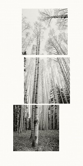 MICHAEL BERMAN, ASPENS WHITEWATER SADDLE Ed. 7 Carbon Pigment Ink on IJ-NKR Niyodo Kozo roll on Natural Paper.