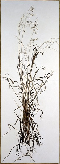 KAREN KITCHEL, ACTUAL SIZE #4  (TALL GRASS) walnut ink, sepia ink, acrylic, rhoplex/vellum