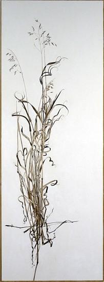 KAREN KITCHEL, ACTUAL SIZE #3  (TALL GRASS) walnut ink, sepia ink, acrylic, rhoplex/vellum