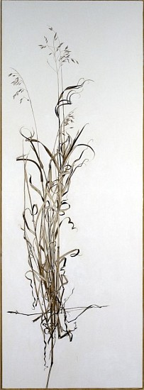 KAREN KITCHEL, ACTUAL SIZE #3  (TALL GRASS) walnut ink, sepia ink, acrylic, rhoplex/vellum