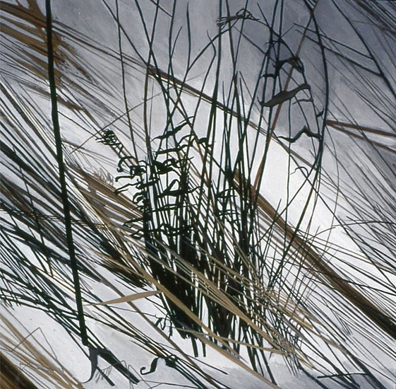 KAREN KITCHEL, DEAD GRASS 4, WINTER oil on panel