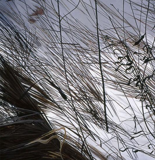 KAREN KITCHEL, DEAD GRASS 8, WINTER oil on panel