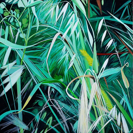KAREN KITCHEL, MATURE GRASS 9, SUMMER oil on panel