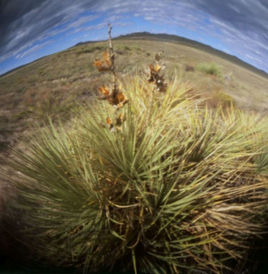 DAVID SHARPE, EASTERN PHENOMENA 8 pinhole photograph