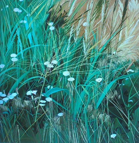 KAREN KITCHEL, Field Bindweed #6 oil on wood