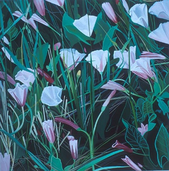 KAREN KITCHEL, Field Bindweed #7 oil on wood