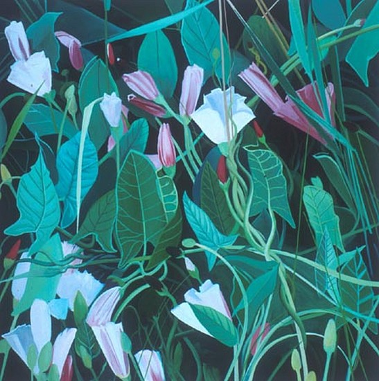 KAREN KITCHEL, Field Bindweed #9 oil on wood